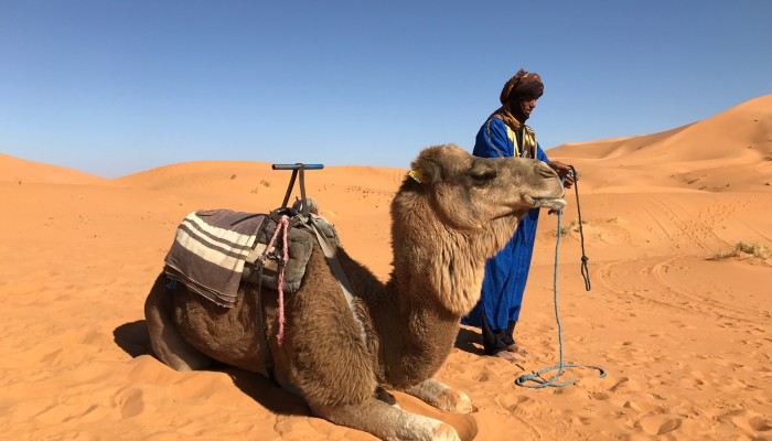Marrakech Merzouga tour