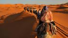 camel tekking
