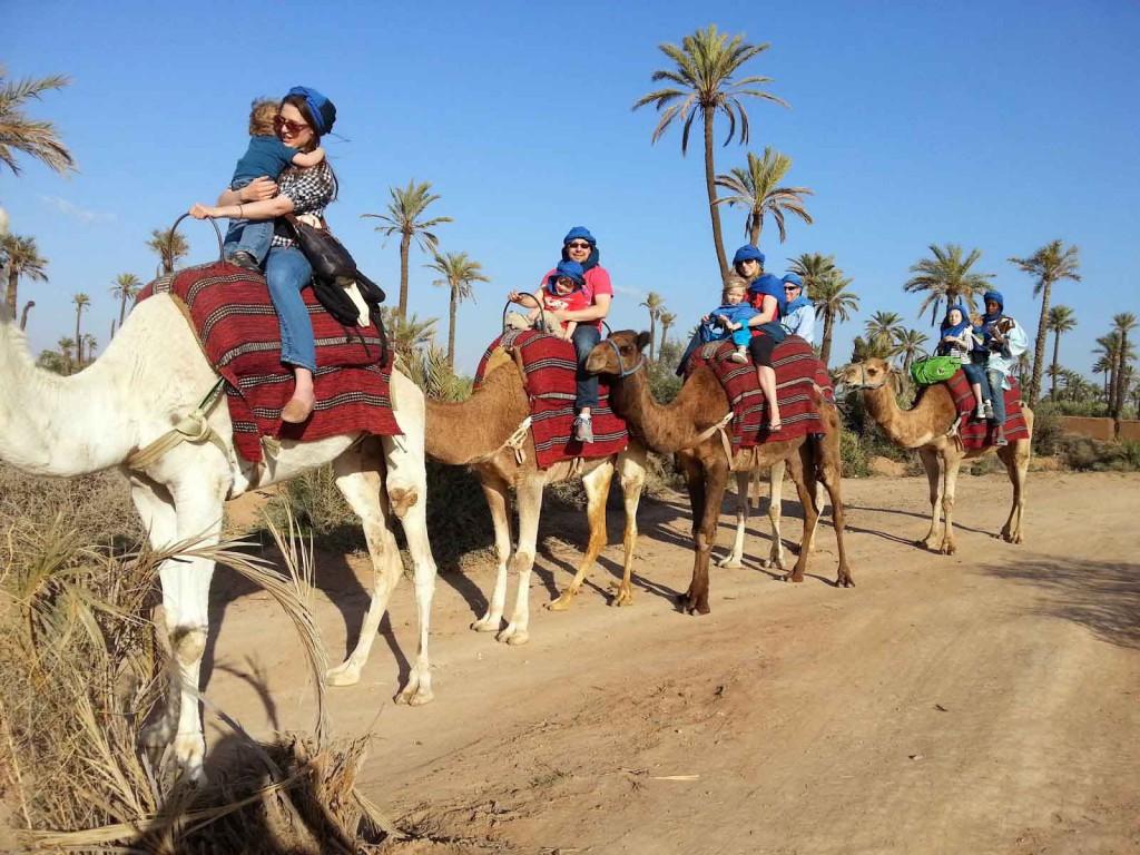 camel-trekking-Marrakech