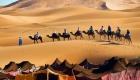 camp desert