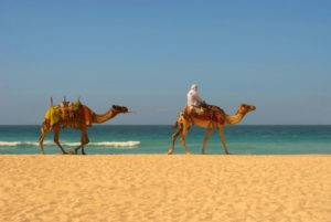 3 Days Agadir Tafraoute tour