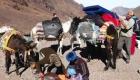 trekking men mules