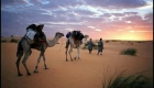 6 Days Fez Marrakech desert tour