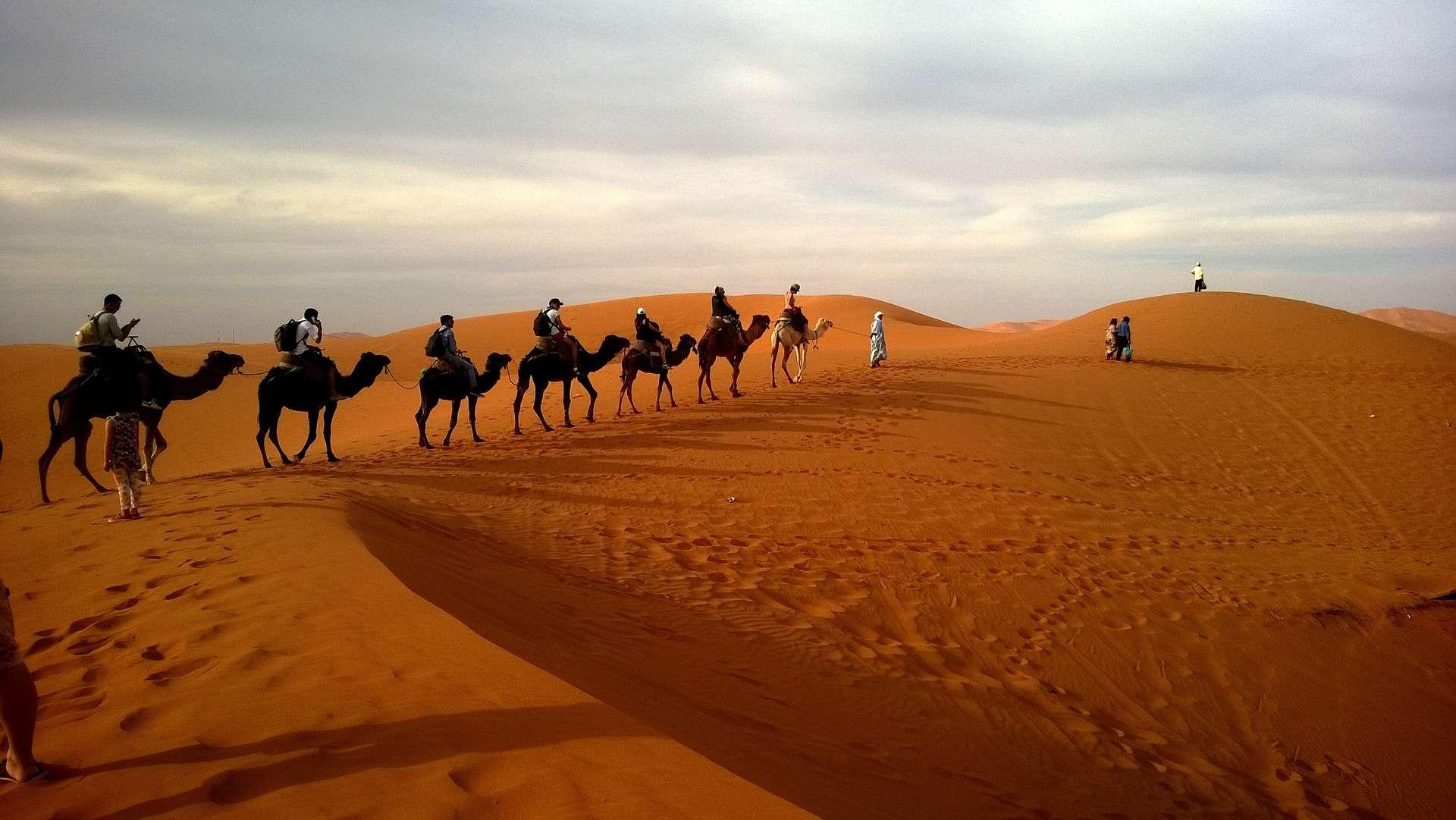 Sahara Agadir Tours