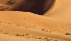 4 Days Agadir desert tour