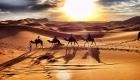 excursiones-en-camellos-Marruecos