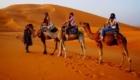 camel-trek-merzouga-desert