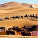 8 Days Fez Marakech Sahara Desert tour