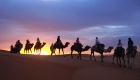 9 Days Marrakech Desert Fez Casablanca tour