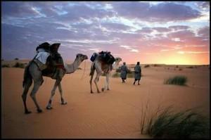 6 Days Fez Marrakech desert tour